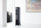 Dynaudio Contour Is Here!